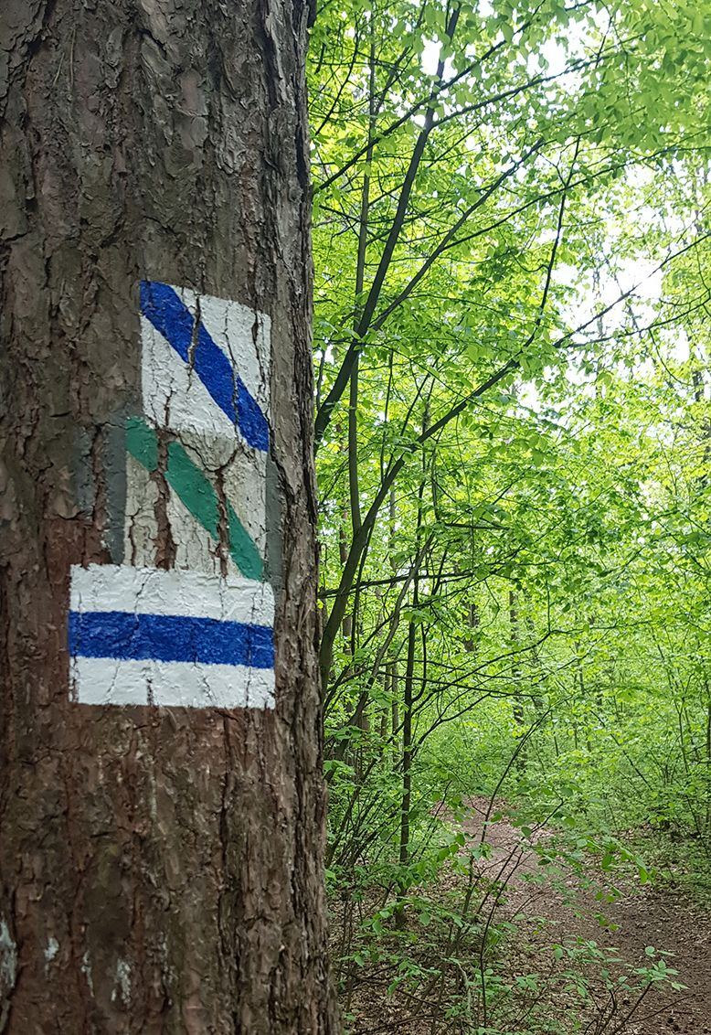 wycieczki po świętokrzyskim parku narodowym - Danuta Ramiączek